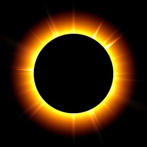 magic of the eclipse library program