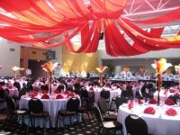 circus theme party St. Louis