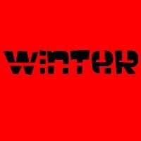 Winter Wuzzle