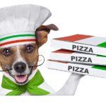 pizza-dog