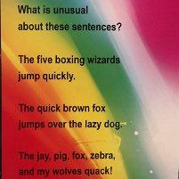 puzzler: unusual sentences